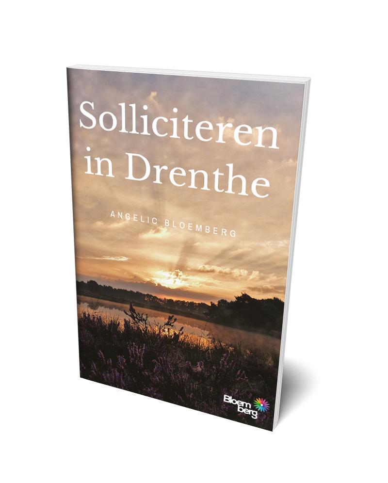 Solliciteren in Drenthe boek | Bloemberg.nu